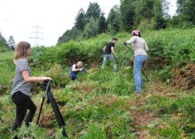 Naturschutzprojekt Schlingnatterschutz mit internationalem Jugendworkcamp Bild 04