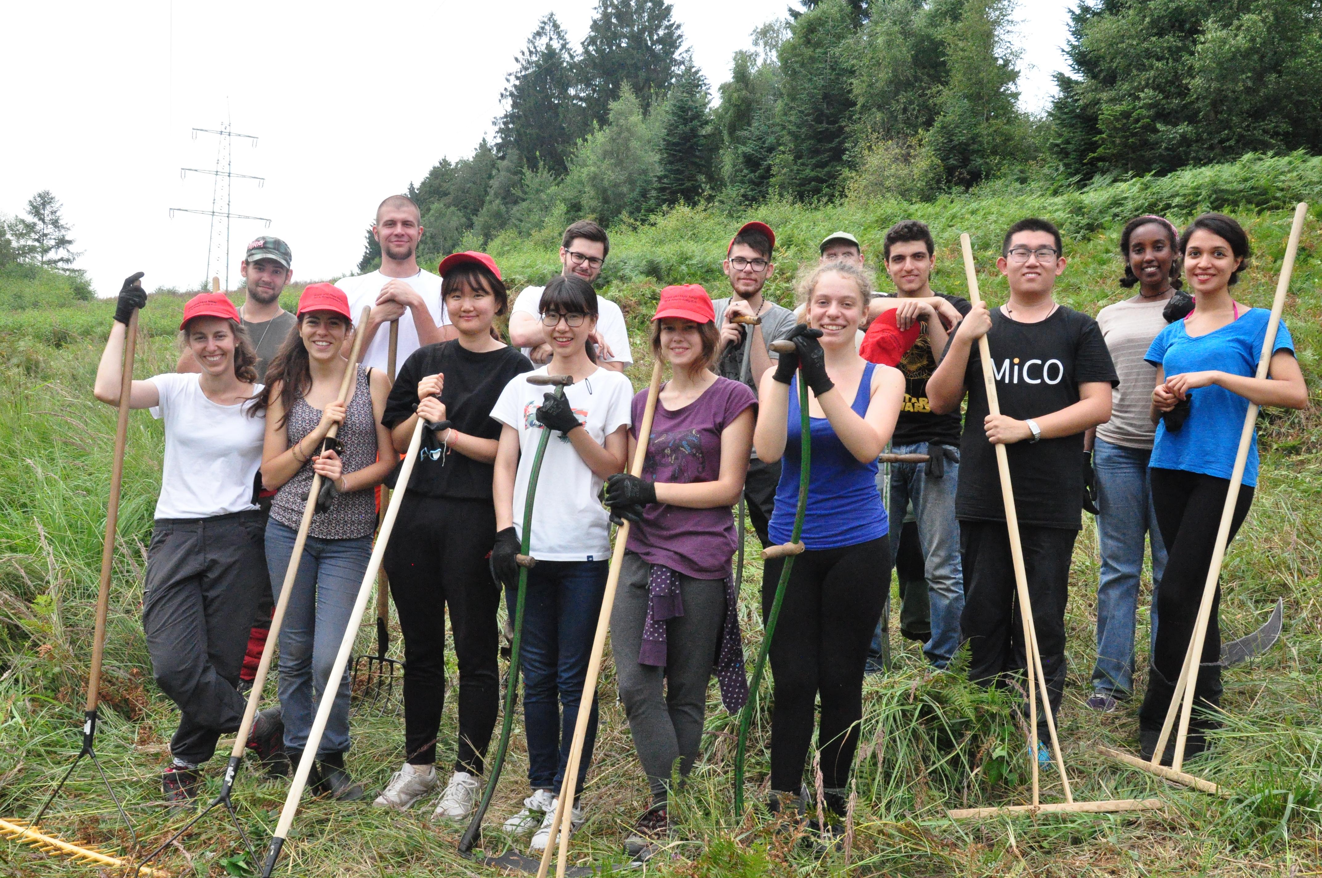 Naturschutzprojekt Schlingnatterschutz mit internationalem Jugendworkcamp